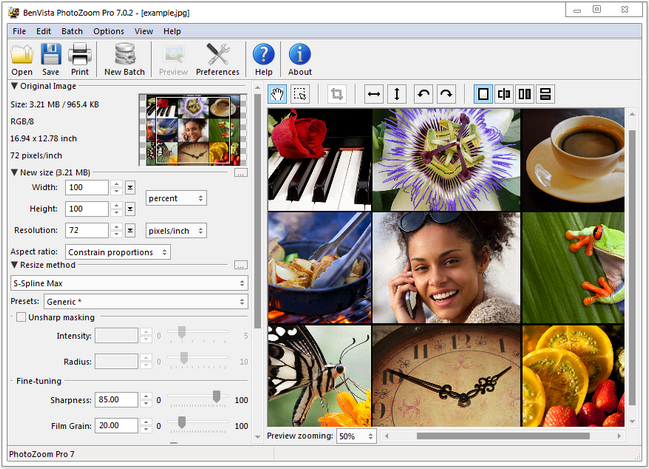 Benvista Photozoom Pro 7 0 4 Crack And Serial Key Patch