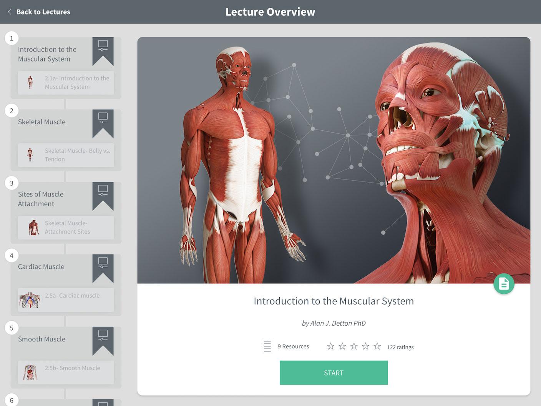Ungewhnlich 3d Human Anatomy Software Galerie Menschliche