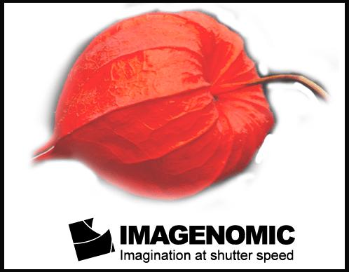 Imagenomic Portraiture mac